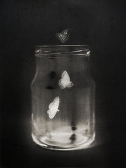 Life - the beginning (EmmaAndersson) Tags: blackandwhite blur dark darkart dreamy dreams soft softphotography contrast struggle journey birth death imagination texture textures butterflies butterfly pure fineartphotography fine art nightmare