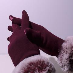 glamorous present:  touchscreen gloves! (Wendy:) Tags: ocf speedlite gloves touchscreen odc pink pixelkingwirelesstriggers 580ex11