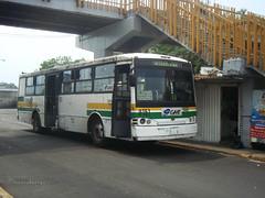Catosa Puma Ruta 112 Metro Taxquea (Metroferreo) Tags: grupometropolitanodetransporte gmt dieselnacional dina carroceriastoluca catosapuma metrotasquea coloniaaldama tlahuac