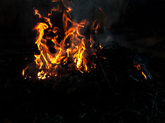 Burning Fire (WR Takiguchi) Tags: fire colors colorful heat bright hot photo photography burning brazil home homework warm ashes smoke look red yellow leaves light