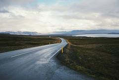 . (Alberto Polo Iañez) Tags: highway iceland island þingvellir t3 contax analogue 35mm film