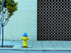 Patterns (J Wells S) Tags: patterns urban street scenefire plugfire hydrant texture bricks dayton ohio