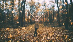 Hello autumn! (hispan.hun) Tags: brenizer bokehmonster bokeh bokehpanorama bokehrama manualfocus canon sonyphotography autumn forest portrait girl woman beauty leaves leaf fall falling orange yellow