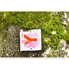 The Sign (horstmall) Tags: schwbischeralbverein sign zeichen wegzeichen trail wanderweg randonner wandern walking hiking hw1 schwbischealbnordrandweg marker markierung marquage rot red rouge vert green grn moss mousse moos baum tree arbre wald fort forest waldweg waldwanderweg foresttrail schwbischealb jurasouabe swabianalps donnstetten rmerstein horstmall