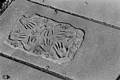 Hand Prints (bac1967) Tags: 1935 leica iiia leitz elmar 5cm f35 lens leicaiiia leitzelmar5cmf35lens kodak trix tx film kodaktrix kodakfilm rodinal rodinal150 blackwhite blackandwhite bw blackandwhitefilm 135 35 35mm 135film 35mmfilm elmarlens elmarltmlens sidewalk cement concrete hand prints initials handprint bothell bothellwa pnw pacificnorthwest