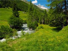 In the beautiful   Ahrntal Valley - South Tyrol (Ostseetroll) Tags: ahrntal geo:lat=4705263976 geo:lon=1213816021 geotagged ita italien kasern sdtirolaltoadige ahr fluss river berge mountains taufererahrntal alpen alps italia italy bergwiese mountainmeadow valleaurina