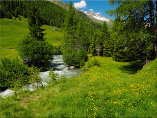 In the beautiful   Ahrntal Valley - South Tyrol