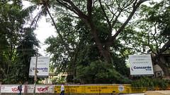 PeeVee Walks 25K KG Towers-1040136 (peevee@ds) Tags: city bangalore boundary peevee kempe gowda kempegowda bengaluru 25kmwalk peeveewalks25k kgtowers