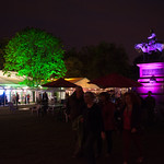 Book Festival evenings