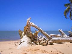 Cabeo - Foz do Rio So Francisco - Sergipe (Carlos A. Nascimento) Tags: lighthouse river farol velhochico brejogrande cabeo fozdosofrancisco faroldocabeo