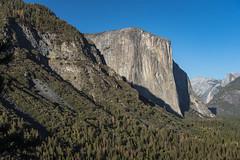 DSC_2731 (Thanks for 1.25 million views!) Tags: yosemitenationalpark californiatrip carolandliam