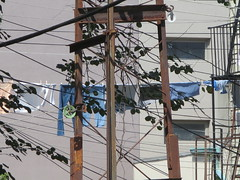clotheslines 018 (nightcrawler1961) Tags: clotheslines