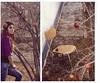 دل زارم (pedramatic) Tags: sky love canon persian heart iran pomegranate iranian 500mm ایران esfahan isfahan solmaz اصفهان راه درخت باغ چشم ایرانی پاییز عشق دختر لبخند مهر انار منتظر pedram کعبه انتظار canon450d ƒ22 صندلی canoneos450d گیسو mohsennamjoo محسننامجو بنفش کیوسک پدرام pedramatic برگریزان پاییزی پدراماتیک چشمبهراه canonlensef50mmf14usm نگاهتو اسکای 20131213 دلزار delezaram سجدهگاه دلآرا کعبهرویت مرغدلشدشکارت 20151017 کهبینمرویماهتو تاراکمانگر نشینمچشمبهراهتو اردلانپایوار کسریسبکتکین یحییالخنثا مراکشتهنگاهتو رویماهتو دلزارم delezaar اسیرِدامخموتابگیسویت آرشسبحانی