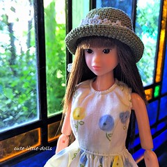 Momoko-sensei (cute-little-dolls) Tags: hat toy restaurant pretty dress handmade stainedglass sekiguchi momokodoll dollsize