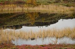 Speglun (saraella) Tags: fjölskyldan katla böddi konurogljósmyndirþingvellir þingvellir2015