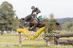 163L_0088 (Lukas Krajicek) Tags: military czechrepublic cz kon koně vysočina vysoina southbohemianregion blažejov dvoreček všestrannost dvoreek