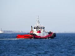 2015.07.23-18.10.11 (Pak T) Tags: boat california catalinaexpress ferry goliah ocean olympusmzuikodigitaled40150mmf4056rlens pacificocean sea ship tractortug tug tugboat water