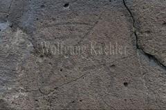 30095319 (wolfgangkaehler) Tags: old animals rock asian ancient asia desert deer mongolia anima centralasia petroglyph gobi blackmountains petroglyphs mongolian gobidesert southernmongolia