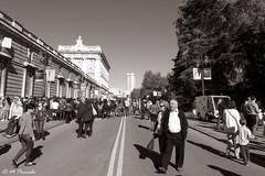 011831 - Madrid (M.Peinado) Tags: madrid blackandwhite bw copyright espaa byn blancoynegro canon spain gente palacioreal palacio comunidaddemadrid 2015 callebailn canonpowershotsx60hs 09112015 noviembrede2015