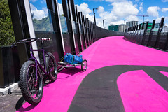 Nelson Street Cycleway : AKA - The Light Path (ibikenz) Tags: pink bikepath bike bicycle jones trailer pugsley surly cyclepath nelsonstreet fatbike rx100 loopbars spurcycle sonycybershotdscrx100 griprings quaxing bikeakl nelsonstreetcycleway bikehosking nelsonstreetbikepath