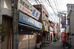 鳩の街 / pigeon street #1