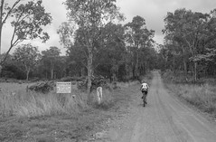 Spicers Gap Road (Neil Ennis) Tags: cycling scenic gap trail national mtb rim bicentennial clumber spicers bnt scenicrimxcnov15