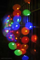 Christmas Lights (Elmer The Fudd) Tags: christmas winter house holiday festive season lights iso200 bokeh f14 decoration multicoloured halo multipleexposure string bulbs jolly trinidadtobago tto phantomphoto valsayn shotat50mm nikond700 speed115 af50mmf14g ev488 expcomp00