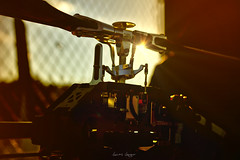 rc helicopter (lionbit76) Tags: rc helicopter trex align sunset rcheli radiocontrolled modelling modellbau 3dheli