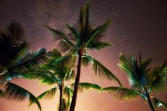 Night Lights (FromHereOnIn.com) Tags: bigisland hawaii hawaiian nature photography stars starrynight night palmtrees tropical travel christopherjohnson fromhereonin nightphotography milkyway exposure sonya7 wide kailuakona usa