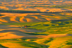 Sunset at Palouse (Alejandro Rdguez) Tags: palouse sunset washington pacific northwest green rolling hills wheat fields landscape colors
