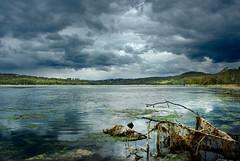 Narrabeen Storm-102 (soul_assets) Tags: stormclouds storm narrabeen lagoon