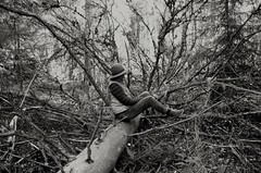 Just me, my camera and a fallen tree! (mimmith) Tags: playing playfulness meandmycamera selfportrait forest forestrecovery forestwalk fallentree bnw bnwstory bnwportrait blackwhite