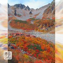 161022k (finalistJPN) Tags: autumn colors colorful kamikochi karasawacurl autumnsky sunshine autumnleaves nationalpark trekking discoverjapan japanguide traveljapan discoverychannel nationalgeographic stockphotos availablenow