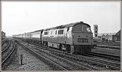 "The ""Up Riviera"" (david.hayes77) Tags: cornishriviera reading berkshire berks dieselhydraulic class52 westernemperor ilford fp4 mono blackandwhite bw 1975 1a19 britishrail railblue 1036 d1036"