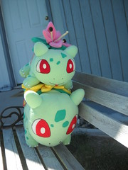 The World S Most Recently Posted Photos Of Plush And