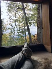 Cottage_Window_Leisure_30324453722_04dd6050df_o (Lynn Friedman) Tags: lazy leisure relax putyourfeetup window view trees jackson wyoming amanresorts amangani