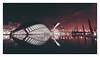 12_11_21_148p (2) (Quito 239) Tags: loceanografic valencia spain españa ciutatdelesartsilesciències ciudaddelasartesylasciencias santiagocalatrava félixcandela lhemisfèric 12tesorosdeespaña palaudelesartsreinasofia museudelesciènciespríncipefelipe lumbracle pontdelassutdelor