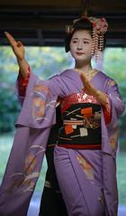 Maiko20161017_03_05 (kyoto flower) Tags: tanan fukuno kyoto maiko 20161017     gaap