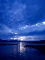 SBSH0488 (YUKARITAKAMURA) Tags: blue bleublaublu sea seascape oiseau bluemoment bluecloud bluesky