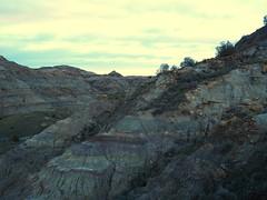 On the Diane Gabriel Trail (jenesizzle) Tags: makoshika makoshikasp makoshikastatepark glendive badlands landscape hiking outdoors roadtrip montana statepark montanastatepark