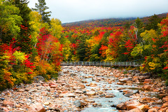 Lincoln Woods (Robert Clifford) Tags: autumn fall kancamagus lincolnwoods nh newhampshire pemigewassetriver bridge clouds foliage hiking landscape mountains outdoors river robcliffordphotography robertallanclifford robertclifford robertallancliffordcom scenic trees view water