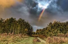 Somewhere... (Jorden Esser) Tags: clouds hss landscape rainbow sliderssunday trees nederlandvandaag