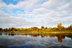 Etwas zum trumen! (   flickrsprotte  ) Tags: herbst kiel schleswigholstein flickrsprotte naturschutzgebiet salzwiesen schilksee wasser bume spiegelungen