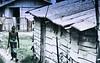 _DSC8742 (rohantha12) Tags: street worker poverty polarization