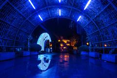 Europa Park Night-photo-tour EP4 (Red-Shadow) Tags: europapark halloween nacht nachtfotogerafie light blue reflection tunnel