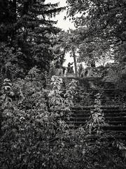 20161012-0020-Edit (www.cjo.info) Tags: bw balvan bulgaria europe europeanunion m43 m43mount microfourthirds monumenttothebattleofbalvan1944 nikcollection olympus olympusmzuikodigitaled918mmf4056 olympusomdem10 silverefexpro silverefexpro2 velikotarnovoprovince westerneurope art blackwhite blackandwhite communism communistera decay digital forgotten gun man monochrome monument people realism sculpture socialism socialistrealism software soldier statue steps technique