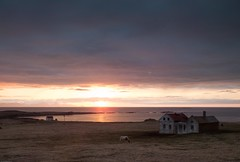 Iceland - May 2015 (3 Wild Sheep) Tags: 2016 iceland osar vatnsnespeninsula clouds farm horses house midnightsun orange seascapes skyscapes spring structure