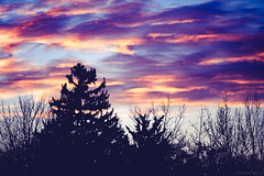 Sunset in Minneapolis Fall 2016 (michaelraleigh) Tags: night sunrise sunset serene highquality minneapolis canon fall minnehaha sun 18135mm silhouette beautiful infocus outdoors sky autumn secluded minnesota