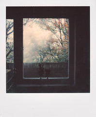 11/11/2016 (the girl who made it on her own) Tags: ronakeller rona polaroidsx70 polaroid impossiblefilm instantfilm film analog filmdiary filmmemories ronasfilmdiary november morningsthatfeellikewinter foggywindows coldoutside coldmornings winter autumn windowview bedsidewindow