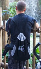 Man at zoo (LarryJay99 ) Tags: male man dude nape dudes chainlinkfence guys guy zoo canonuser westpalmbeach men candid dreherparkzoowestpalmbeach dslr photographer fence shoulders urbanbackpacker people canonef70300mmf456isusm